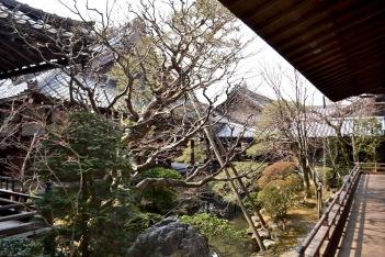 Ekiando Temple 永観堂